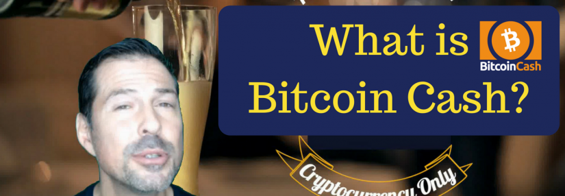 The Crypto Bar: What Is Bitcoin Cash?